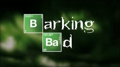 barkingbad