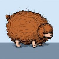 fat_mess