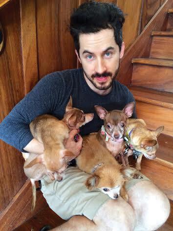 Celebrity Dog Grooming - Pet Groomer - Dublin, Ireland ...