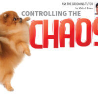 controlling-chaos