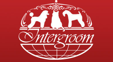 Groomer To Groomer Pet Grooming News Stories And