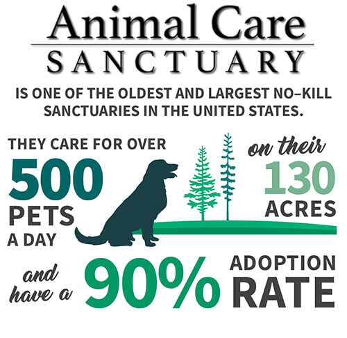 animal care sanctuary
