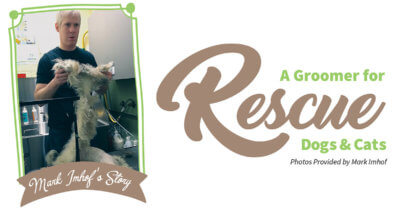 A Groomer for Rescue Dogs & Cats