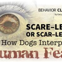 Human Fear