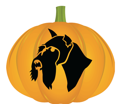 Wire Coated Breed Pumpkin