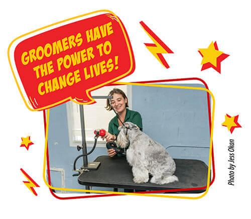 groomer powers