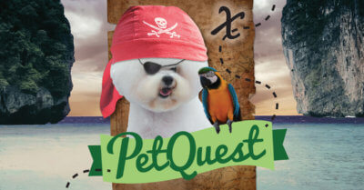 petquest pirate dog