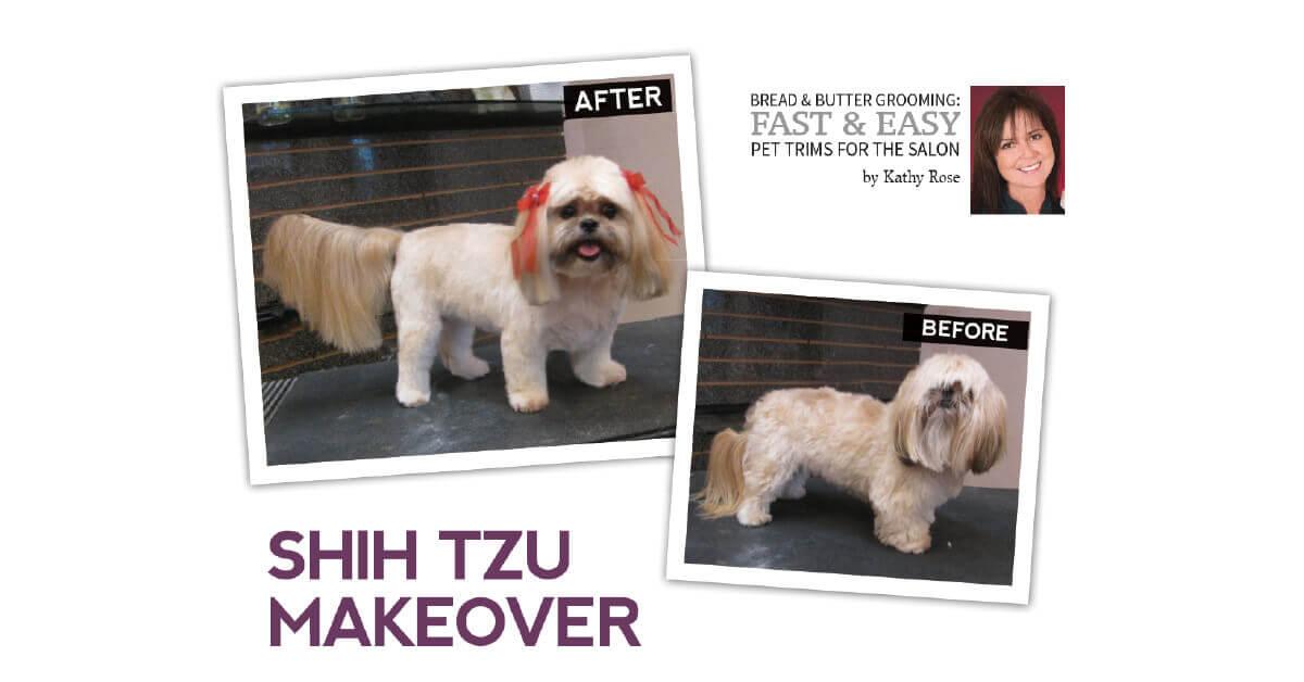 Shih Tzu Makeover Groomer To Groomer Magazine