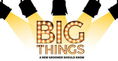 Big Things a New Groomer Should Know