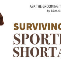 Surviving the Sporting Shortage
