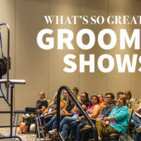 What's so Great About Grooming Shows?