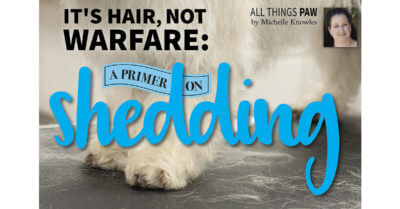 It's Hair, Not Warfare: A Primer on Shedding