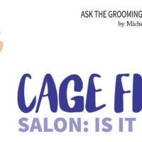 Cage Free Salon: Is It Safe?