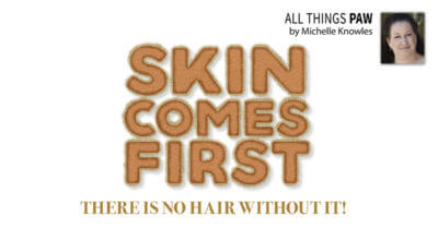Skin Comes First: There Is No Hair Without It!