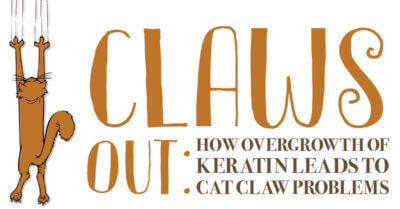 Claws Out: How Overgrowth of Keratin Leads to Cat Claw Problems