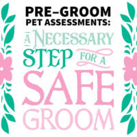 Pre Groom Pet Assessments: A Necessary Step for a Safe Groom