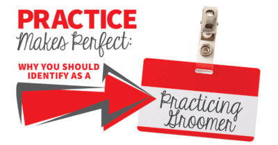 Practice Makes Perfect: What You Should Identify as a Practicing Groomer