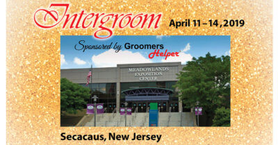 Intergroom 2019 Show Preview