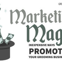 Marketing Magic: Inexpensive Ways to Promote Your Grooming Business