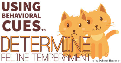 Using Behavioral Cues to Determine Feline Temperament