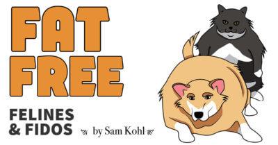 Fat Free Felines & Fidos