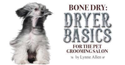 Bone Dry: Dryer Basics for the Pet Grooming Salon
