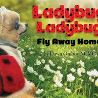 Ladybug Ladybug, Fly Away Home